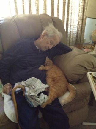 Old man and cat sleeping five more minutes with website link